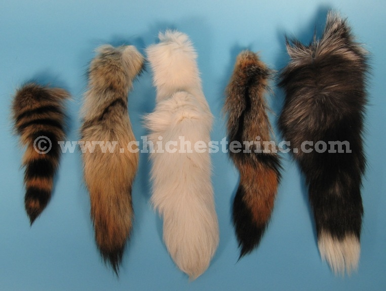 animal tails fox coyote badger horse skunk racoon