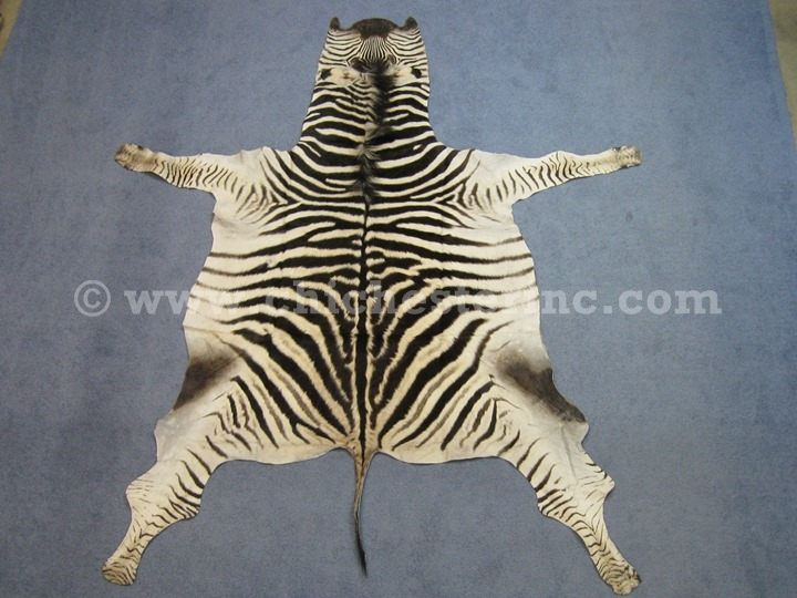 Genuine Zebra Rug Area Rug Ideas