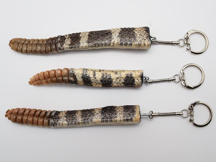 Rattlesnake Keychains, Texas Western or Eastern Rattlesnake