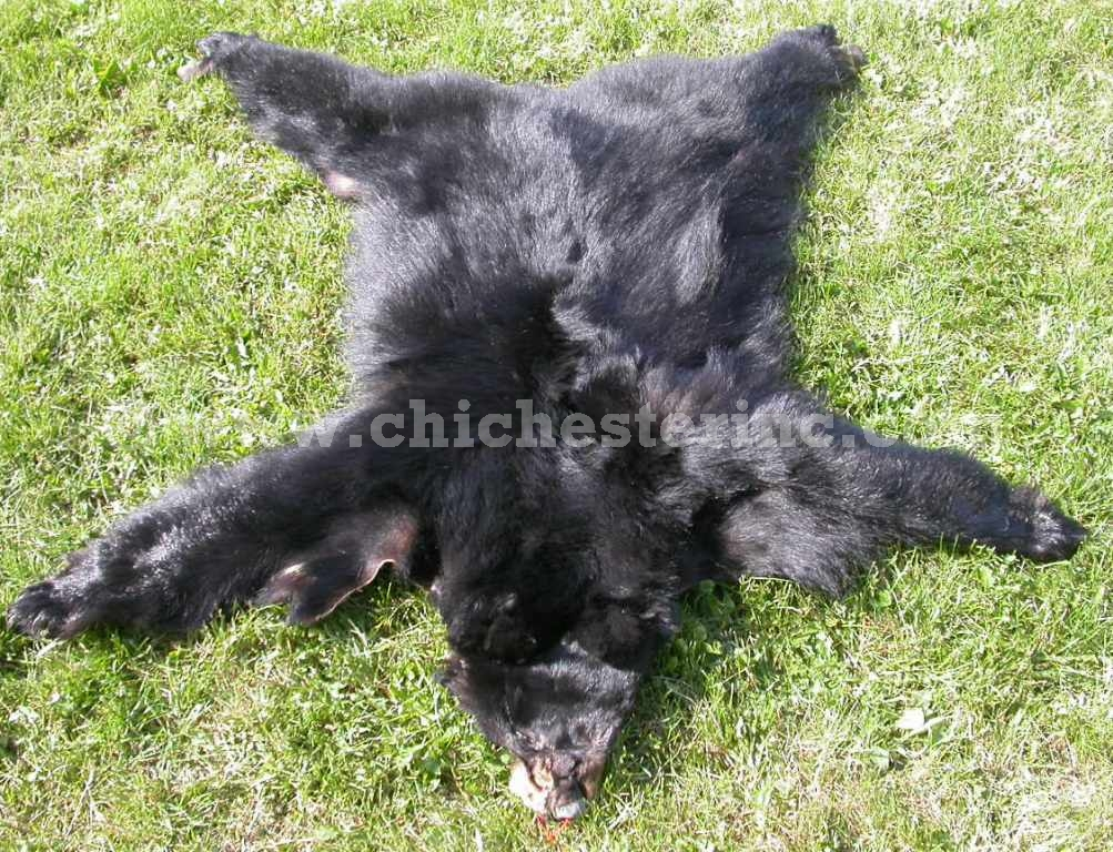High Quality Black Bear Skins