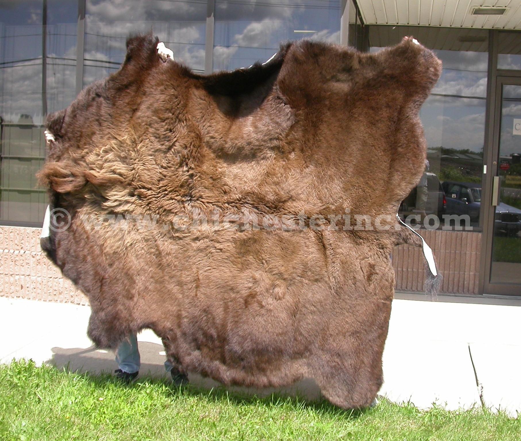 Buffalo Hides Or Buffalo Skins Or Buffalo Robes Or Tanned