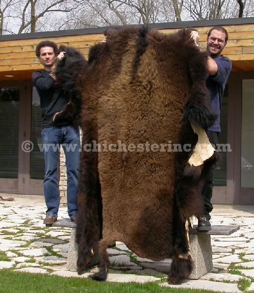 Buffalo Hides Or Skins